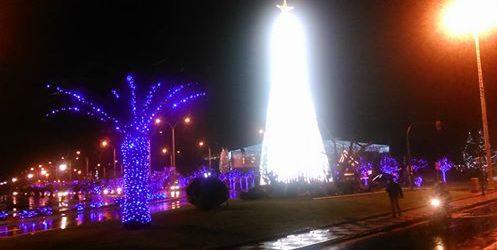 Αναψαν τα 80.000 λαμπάκια του Χριστουγεννιάτικου δέντρου (photos)