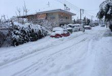 Σφοδρή χιονόπτωση από το πρωί στα Φάρσαλα προκάλεσε επιπλέον προβλήματα (photos)