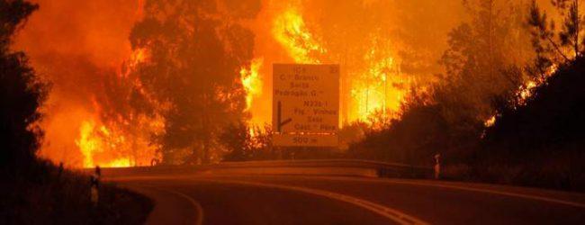 Πορτογαλία: 57 οι νεκροί από τη δασική πυρκαγιά στη Λεϊρία (photo)