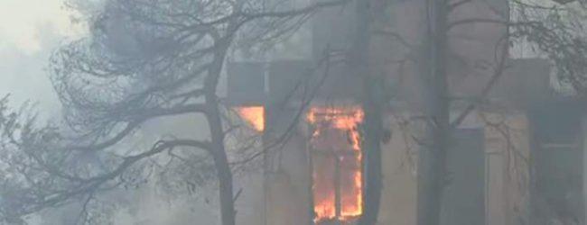Κόλαση φωτιάς στον Κάλαμο: Κάηκαν 20 σπίτια, εκκενώθηκαν δύο κατασκηνώσεις [εικόνες]