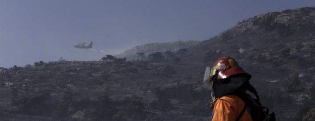 Φωτιές από την Αλβανία πέρασαν στην ελληνική επικράτεια