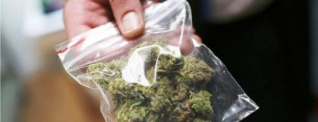 Βόλος: Συνελήφθη 23χρονος για διακίνηση ναρκωτικών