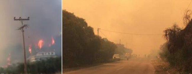 Μεγάλη φωτιά στην Κασσάνδρα Χαλκιδικής -Κοντά σε σπίτια