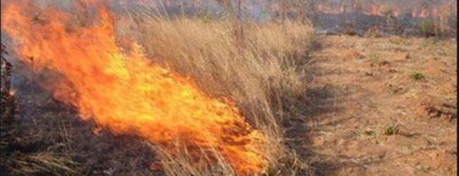 Άυπνοι έμειναν από την κάπνα στην Φιλιππούπολη – Αφόρητη η κατάσταση από τις καλαμιές που καίγονται