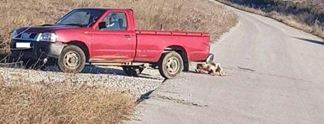 Συνελήφθη ο 75χρονος που έσερνε σκύλο πίσω από το αυτοκίνητο σε χωριό έξω από τη Λάρισα!