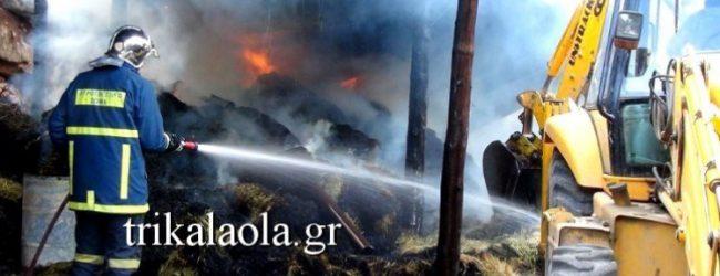 Τραγικός απολογισμός στα Τρίκαλα: 530 ζώα κάηκαν ζωντανά