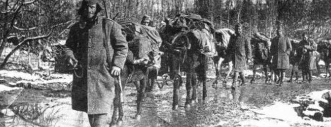 Βρέθηκαν τα οστά 108 Ελλήνων που έπεσαν στο Αλβανικό μέτωπο