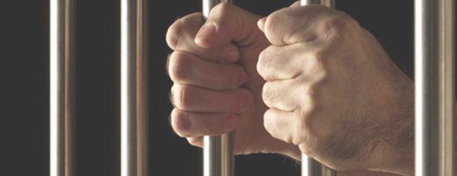 Στη φυλακή 20χρονος που επιχείρησε να αποφύγει τροχονομικό έλεγχο στην Ιωλκού
