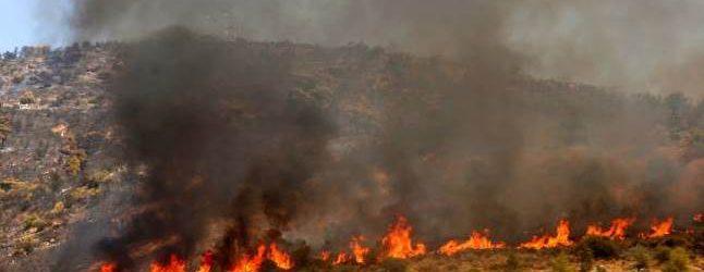 Με βαριά πρόστιμα για την καύση σιτοκαλαμιών προειδοποιεί η Πυροσβεστική Βόλου