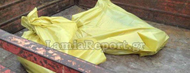Σοκ στη Λαμία: Μαζική θανάτωση αδέσποτων σκύλων (photos & vid)