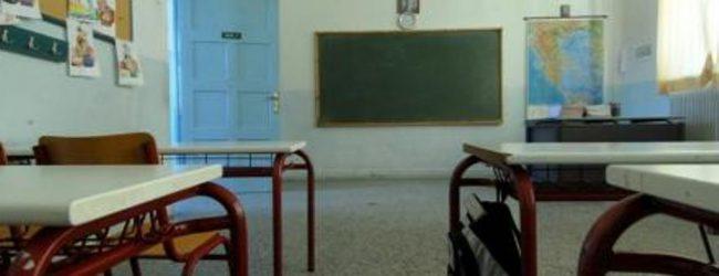 Γέμισε ψύλλους και τσιμπούρια το σχολείο Στουρναρέικων στα Τρίκαλα-Ανάστατοι οι γονείς