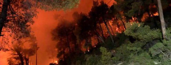 Αλόννησος: Συνεχίζεται η προσπάθεια κατάσβεσης της φωτιάς -Αναζωπυρώσεις λόγω ανέμων