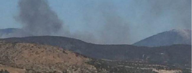 Μάχη με τις φλόγες δίνουν οι πυροσβέστες στη μεγάλη φωτιά στην Εύβοια