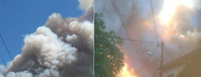 Μεγάλη φωτιά σε δασική έκταση στην Εύβοια -Εκκενώθηκαν δύο χωριά [εικόνες & βίντεο]