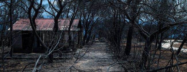 Φωτιά στο Μάτι: Ένα μήνα μετά ακόμα δεν έχουν δοθεί τα επιδόματα πρώτης ανάγκης