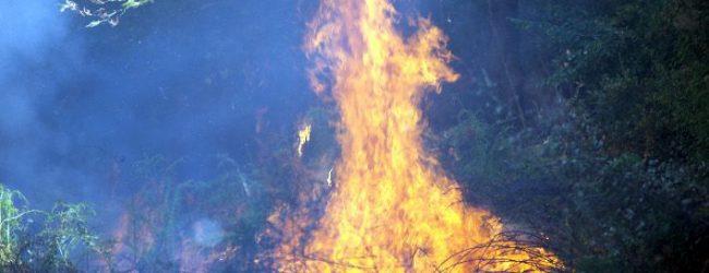 Τραγωδία στα Τρίκαλα: Κάηκε ζωντανός προσπαθώντας να σβήσει φωτιά στο περιβόλι του