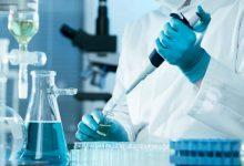 Η ακτινοβολία κινητών προκάλεσε καρκίνο σε πειραματόζωα